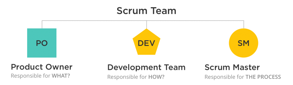 Scrum Team Members App Development